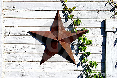 Rusted star and green vine