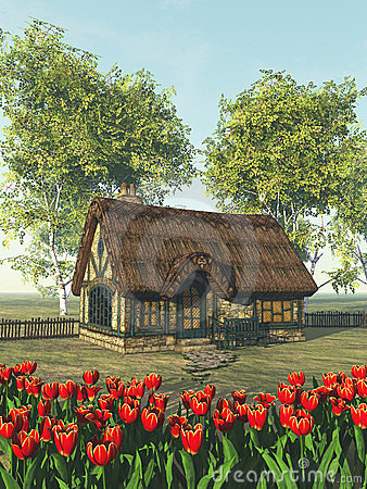 Rustic country house