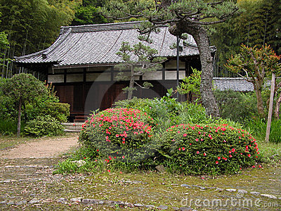 Rustic Japanese yard