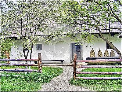 Rustic romanian house