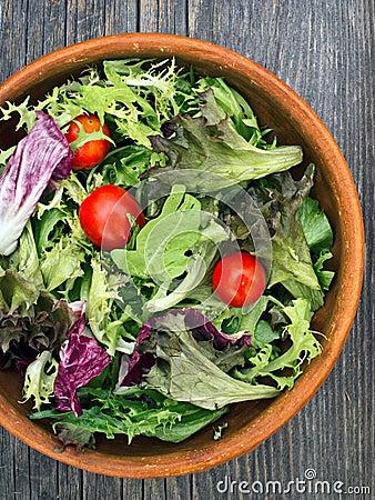 Free Rustic Salad Greens Royalty Free Stock Photo - 48520215