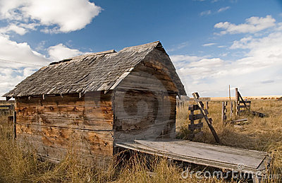 Rustic shed 2