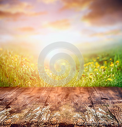 Free Rustic Wooden Table Over Yellow Dandelion Field And Sunset Sky, Nature Stock Image - 51109251