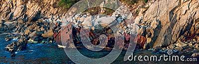 Rusty coastal shipwreck