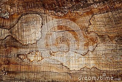 Rusty Wood