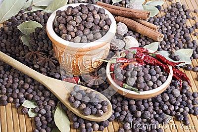 Árvore de pimenta da Jamaica e a outra especiaria