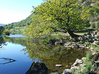 Rydal Water in Spring