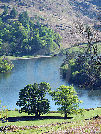 Rydal Water in Spring sunlight