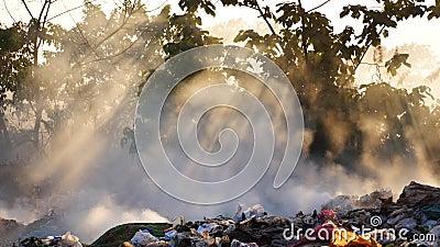 Słońce błyszczy przez mgiełki zbiory