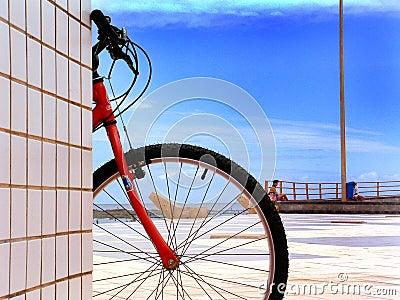 Słońce roweru