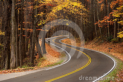 S-curve in Great Smokey Mountains