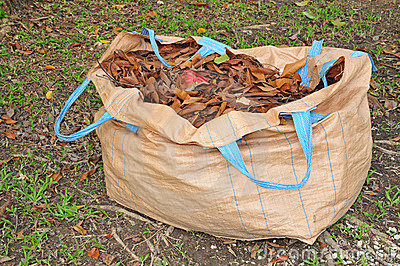 A Sack Of Dried Leaves