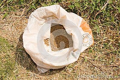 Sack of fish feed pellets