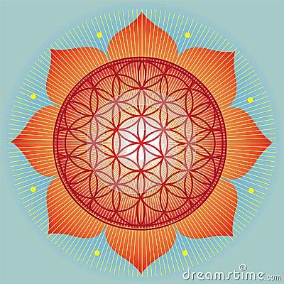 Free Sacred Geometry SunFlower Royalty Free Stock Photos - 27723008