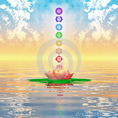 Free Sacred Lotus And Chakras Royalty Free Stock Image - 48749136