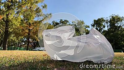 Sacs en plastique laissés dans le parc public clips vidéos
