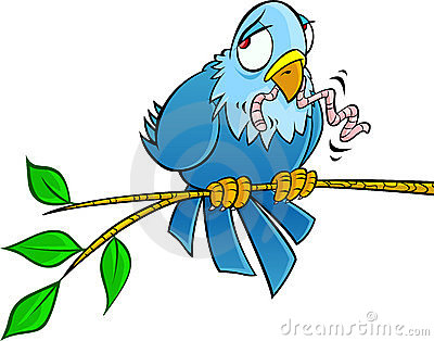 Sad bird on a branch
