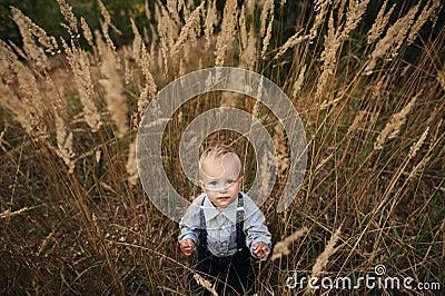 Sad little boy in high grass