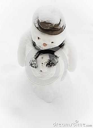 Sad Snowman Images, Stock Photos & Vectors | Shutterstock  |Sad Melting Snowman