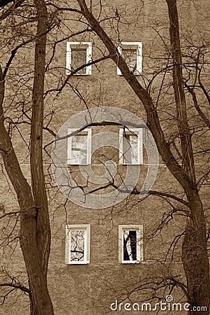 Sad windows