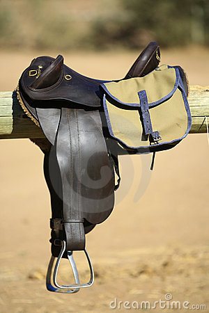 Saddle and bag