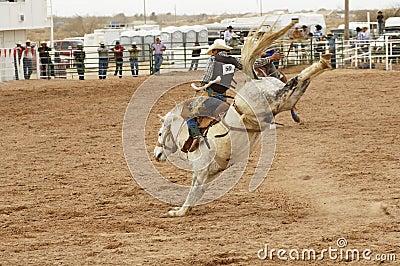 Saddle bronc 1