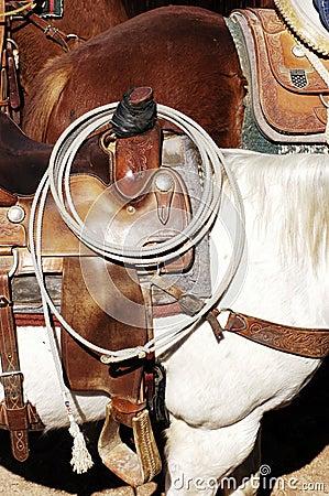 Saddle & Rope
