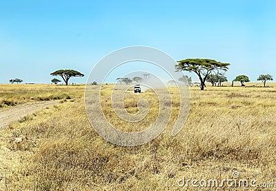 Safari car in tanzania