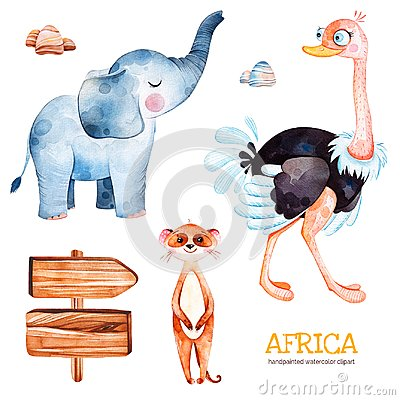 Free Safari Collection With Ostrich, Elephant, Meercat, Wooden Sign, Stones. Stock Photography - 113590302