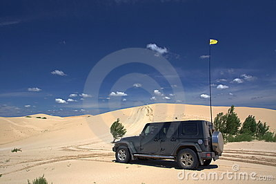 On Safari In Desert Royalty Free Stock Images - Image: 20380329