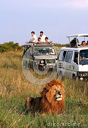 Free Safari In Africa Stock Photo - 17014180