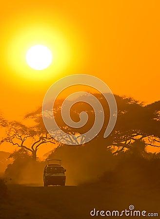 Free Safari Jeep Driving Through Savannah In The Sunset Royalty Free Stock Photo - 6700985