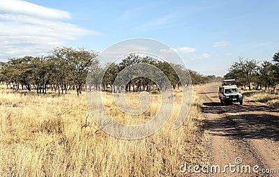 Safaris car