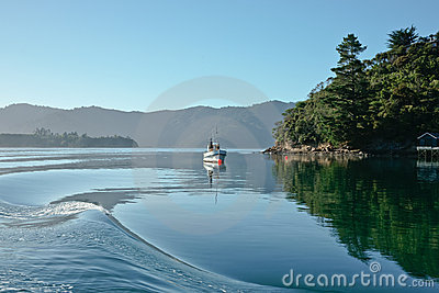 Safe harbour, the calm Marlborough Sounds.