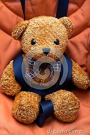 Safety belt & teddy bear