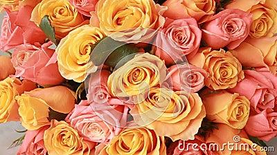 Saftig färgrik bukett av rosa och orange rosor, närbild