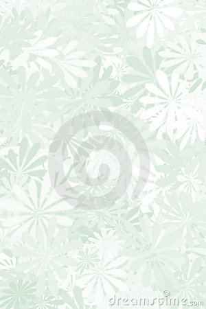 Sage Green Floral Background