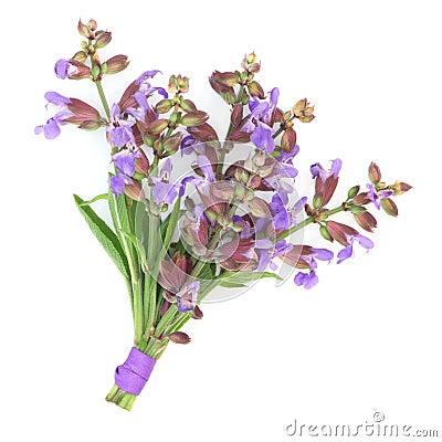 Sage Herb Flower Posy