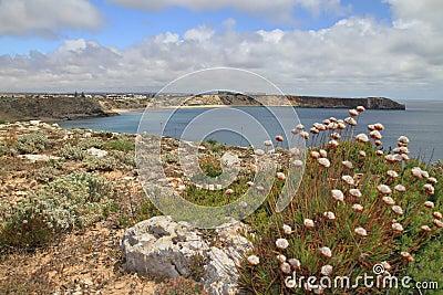 Sagres landscape