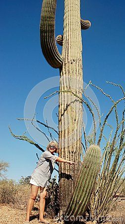 Free Saguaro National Park Giant Cactus Finger Stock Image - 31533071
