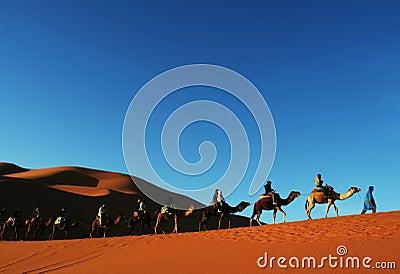 Sahara desert_1