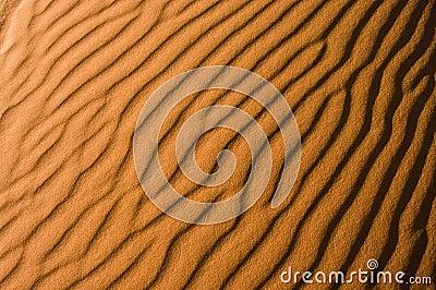 Sahara desert detail