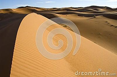 sahara desert dune 2