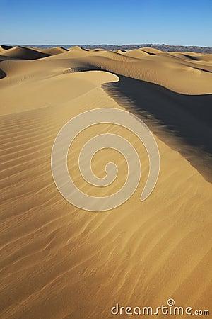 Sahara desert sand dunes with clear blue sky.