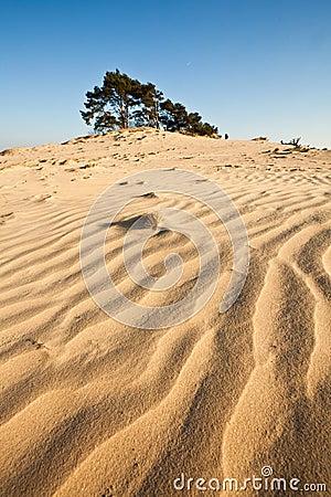 Sahara of Europe