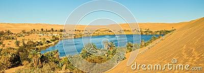 Sahara Oasis Panorama