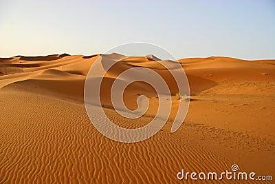 Sahara sanddunes