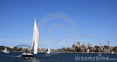 Sail Boat in Sydney Harbour