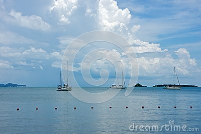 Sail boats in the blue sea