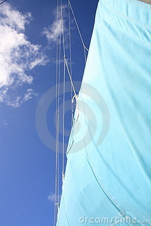 Sail of a catamaran
